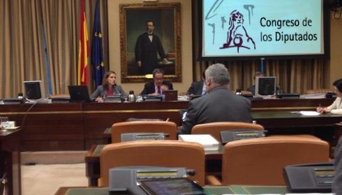 Elena de la Peña comparece en nombre de la Asociación Española de la Carretera (AEC) ante la Comisión sobre Seguridad Vial y Movilidad Sostenible del Congreso de los Diputados.