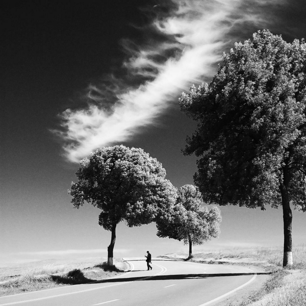 Carretera_Medioambiente_Instagram_Asefma_by_Padurariu_Alexandru_Unsplash